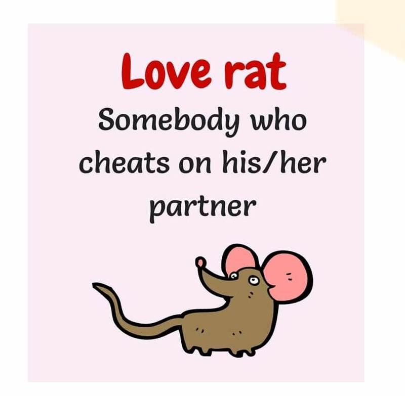 اصطلاحات انگلیسی عاشقانه