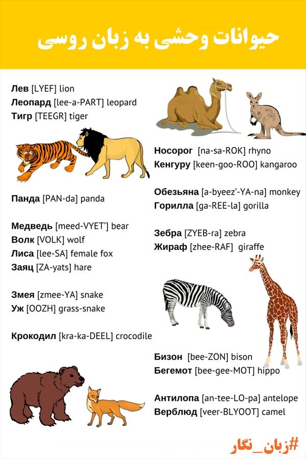 حیوانات به روسی