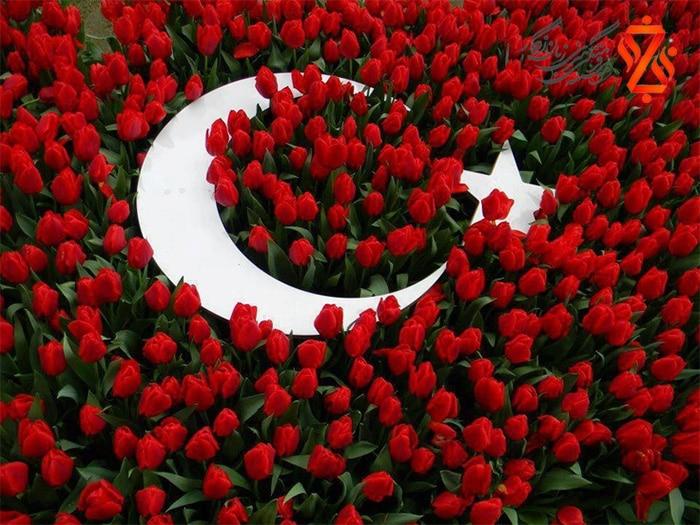 گل ها به ترکی استانبولی